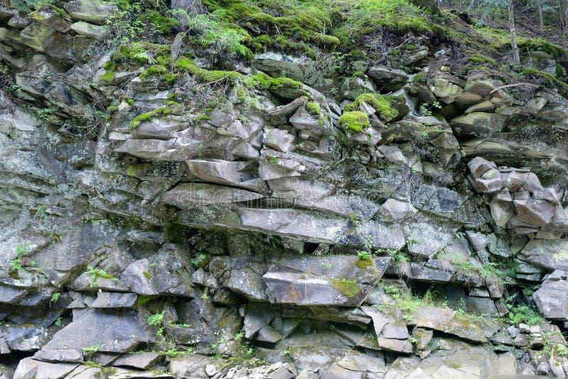 火成岩的地质部分 库存照片