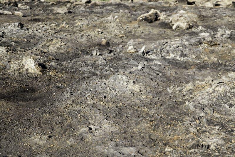 火星领域 免版税库存图片