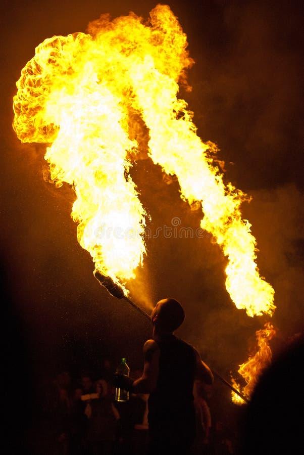 火显示 库存图片