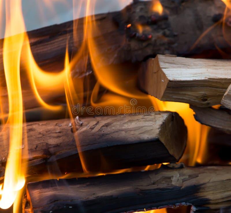 火火焰从木头的 免版税图库摄影
