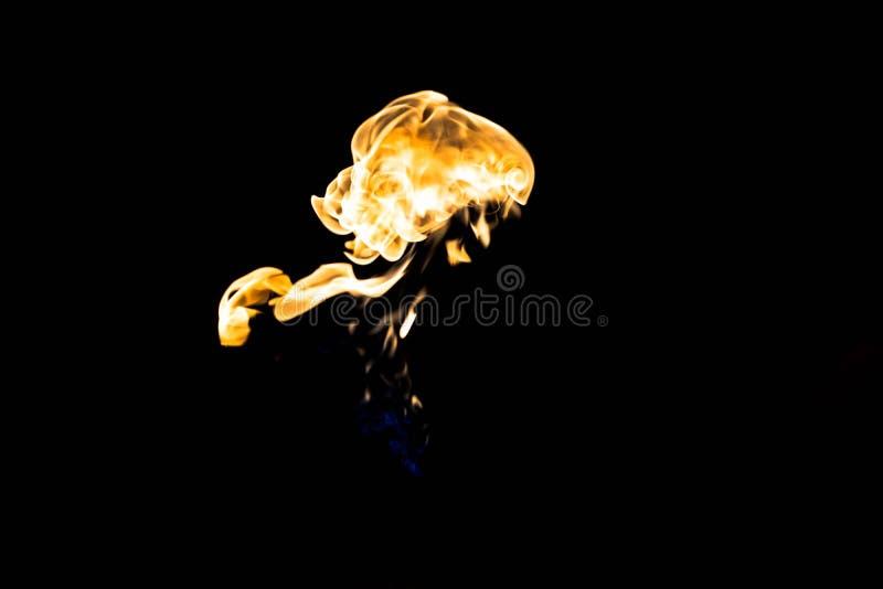 火火焰在黑暗的背景的 免版税库存照片