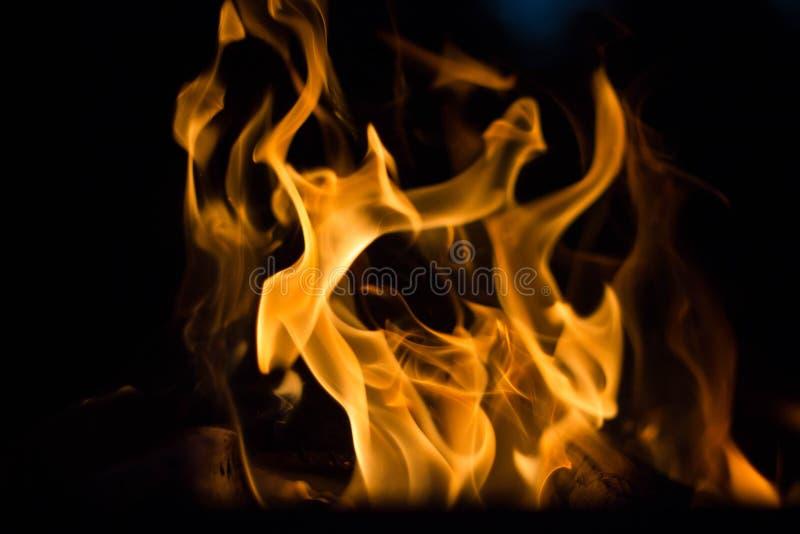 火火焰在黑背景的 在黑暗的火愤怒 篝火在晚上 火焰跳舞 免版税库存图片