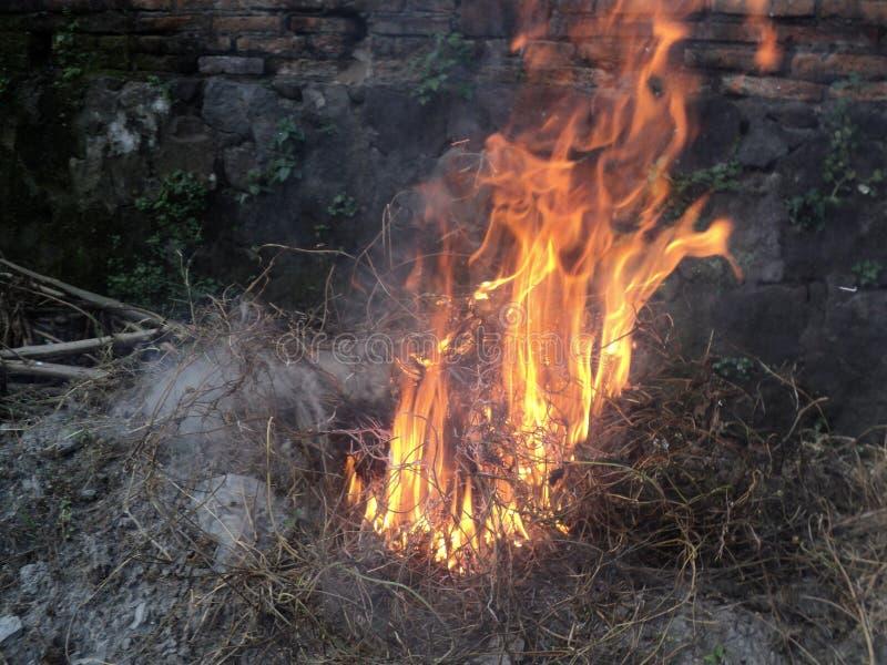 火火焰,当烧干草垃圾时 免版税图库摄影
