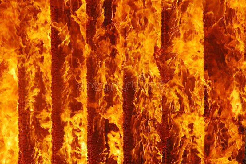 火烧伤 库存照片