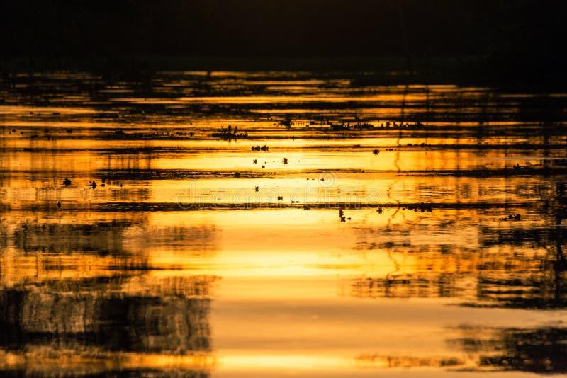 火热的橙色日落反射 库存照片