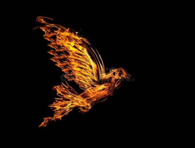 火焰在黑色查出的飞行鸠 库存图片