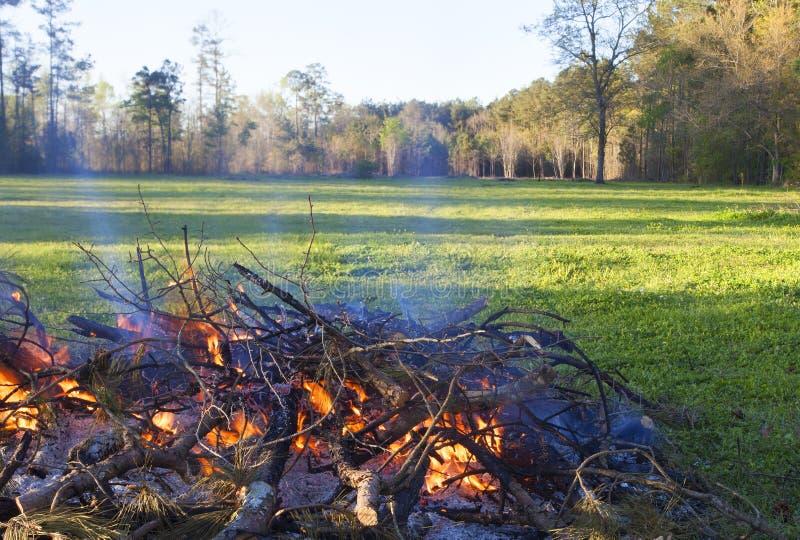 火焰状刷子 库存图片
