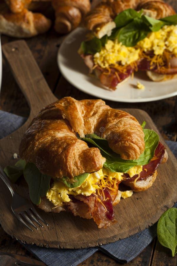 火腿和乳酪蛋早餐三明治 免版税库存图片