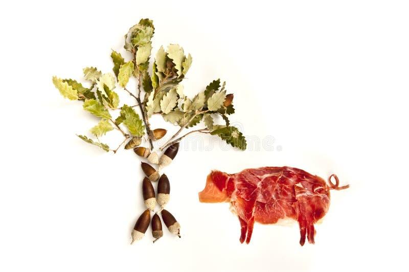 火腿和树 免版税库存图片