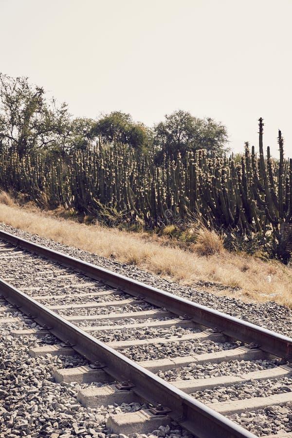 火车跟踪成为不饱和的风景 库存照片