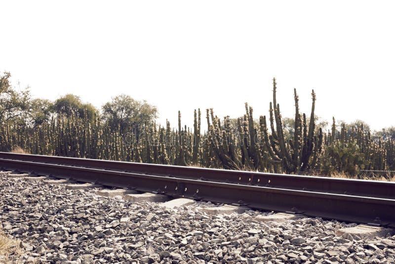 火车跟踪成为不饱和的风景 库存图片
