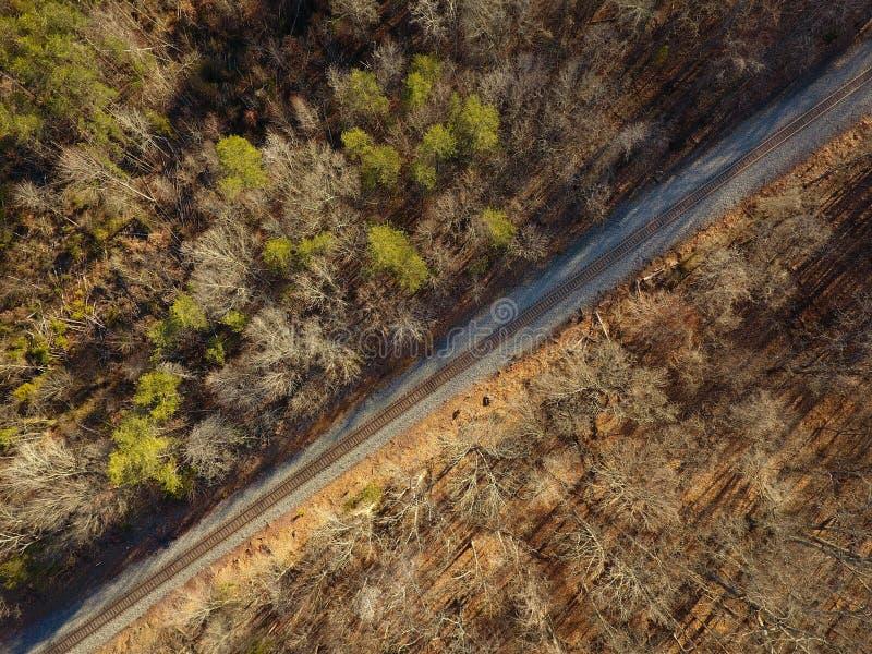 火车鸟瞰图通过森林跟踪赛跑 免版税库存照片