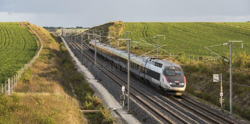 火车SNCF TGV在法国 库存图片