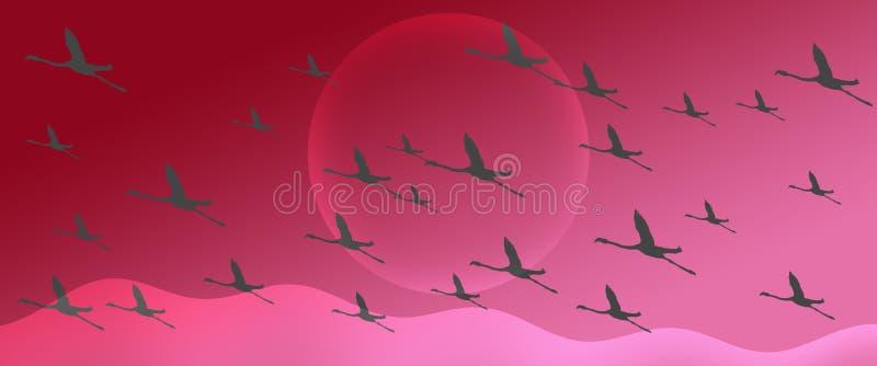 火鸟小组群在洋红色桃红色梯度倒栽跳水背景的剪影飞行 皇族释放例证