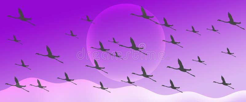 火鸟小组群在紫罗兰色梯度倒栽跳水背景的剪影飞行 库存例证