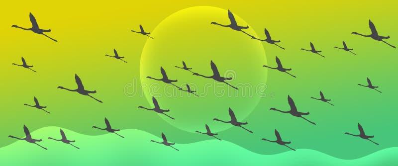 火鸟小组群在绿色梯度倒栽跳水背景的剪影飞行 向量例证