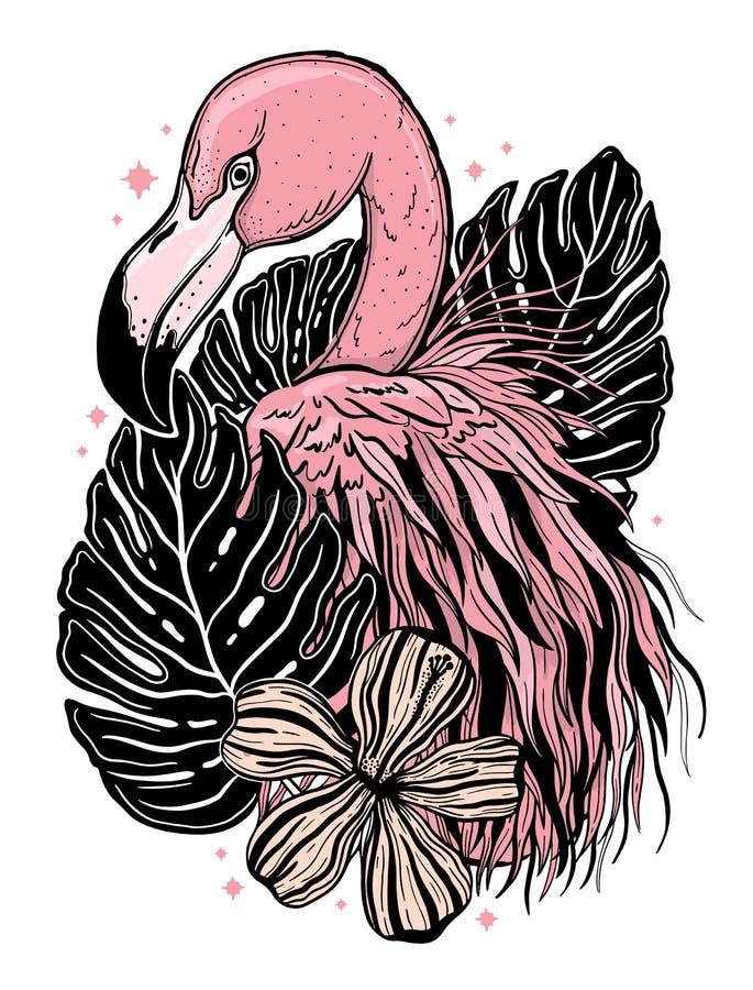 火鸟纹身花刺热带动物鸟 夏天自然图画 黑和粉色被隔绝的ina白色背景 向量例证