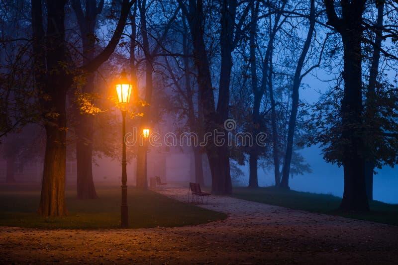 灯在黎明期间的城市公园 免版税图库摄影