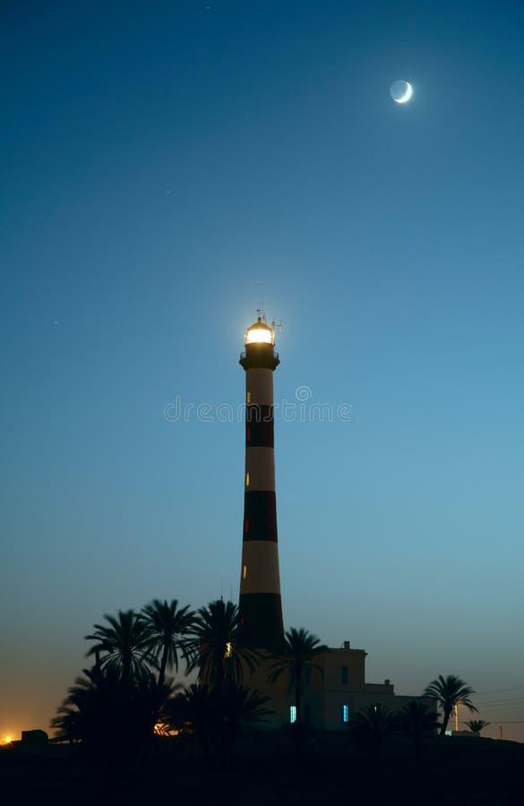 灯塔棕榈树 免版税库存照片