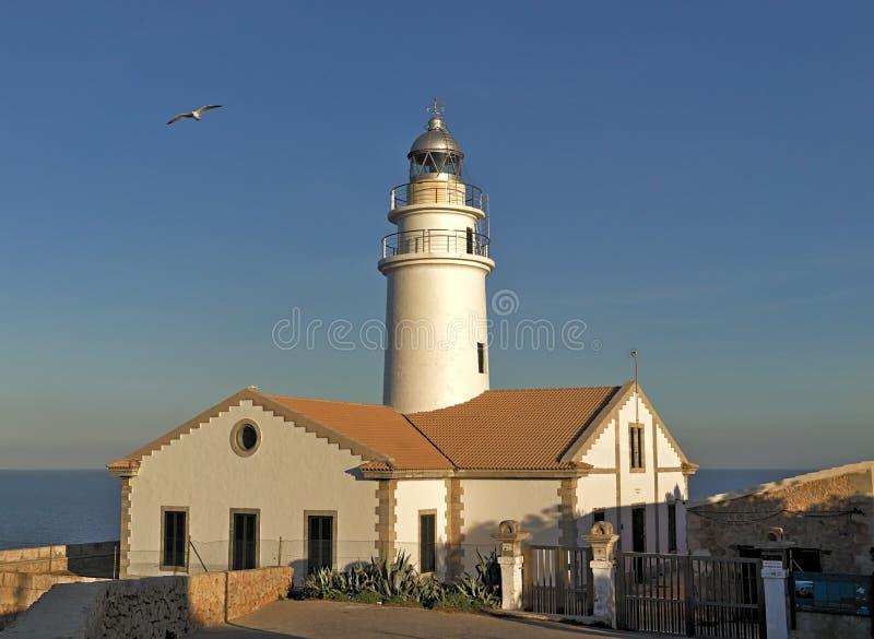 灯塔远的de卡普德佩拉,与海鸥,cala ratjada,马略卡,西班牙的白天,晴朗的天空蔚蓝 库存照片