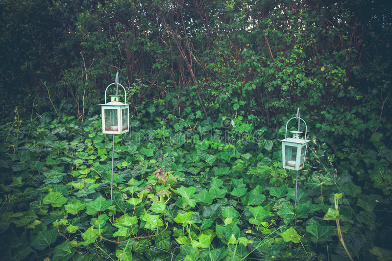 灯笼在一个绿色庭院里 免版税库存照片