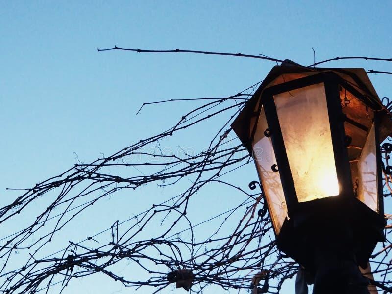 灯笼,天查寻光长得太大 免版税库存照片