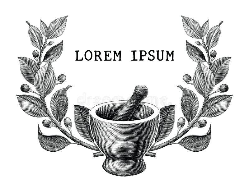 灰浆和杵有草本框架葡萄酒板刻illustratio的 皇族释放例证