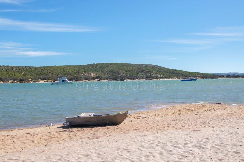 灰溜溜在海滩 免版税库存图片