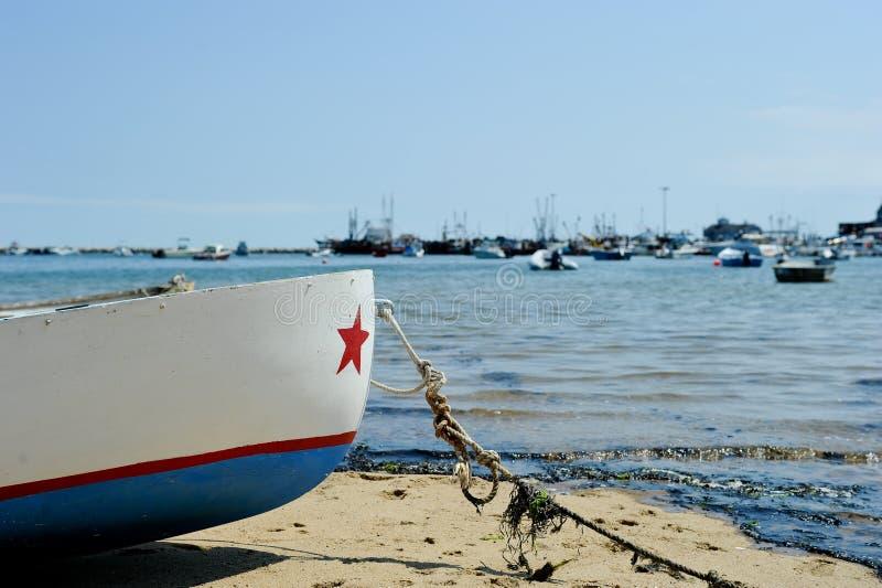 灰溜溜的海滩 免版税库存照片