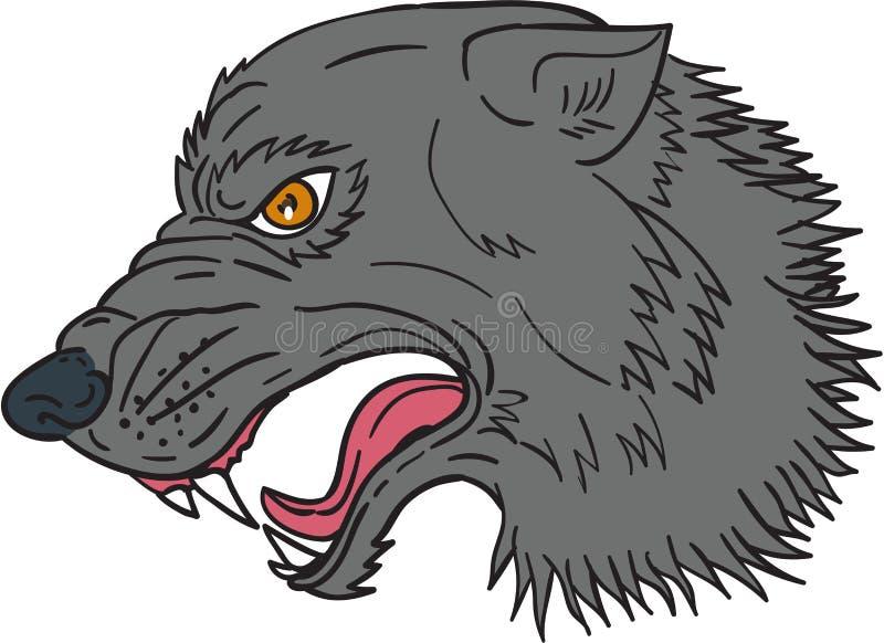 灰狼顶头咆哮图画 向量例证