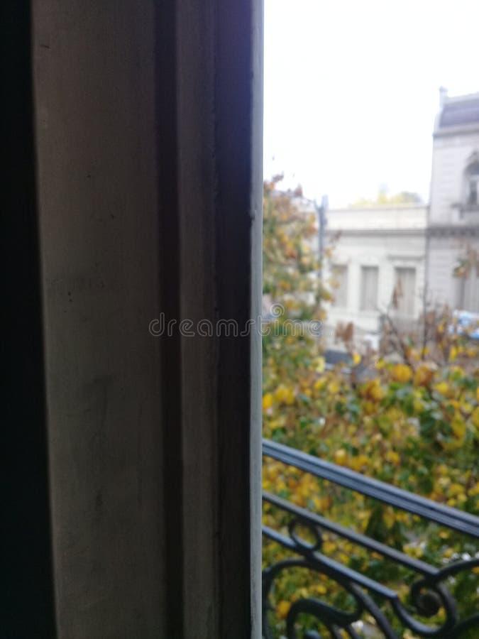 灰色天,布宜诺斯艾利斯,雨 庭院绿色 Windows 免版税库存图片