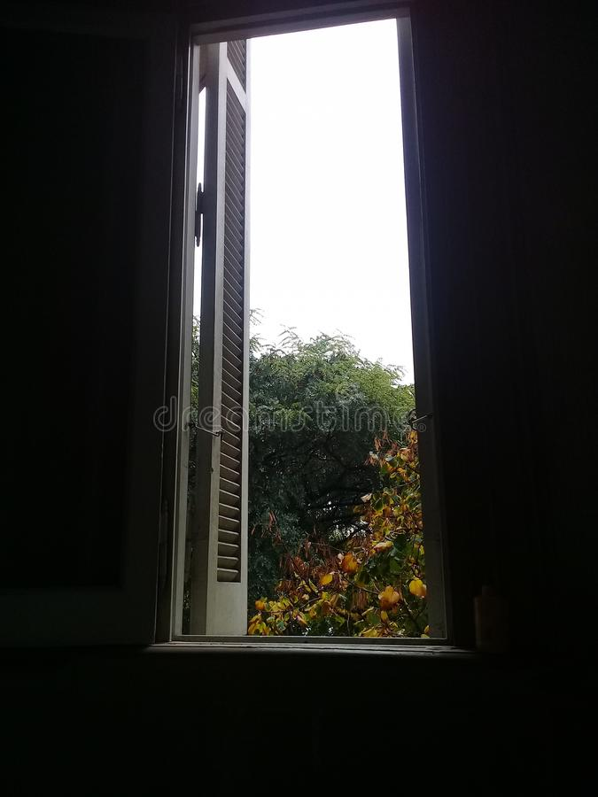 灰色天,布宜诺斯艾利斯,雨 庭院绿色 Windows 库存照片