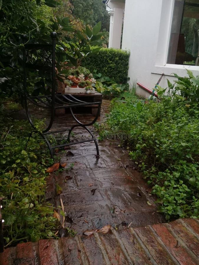 灰色天,布宜诺斯艾利斯,雨 绿色加尔德角 免版税图库摄影