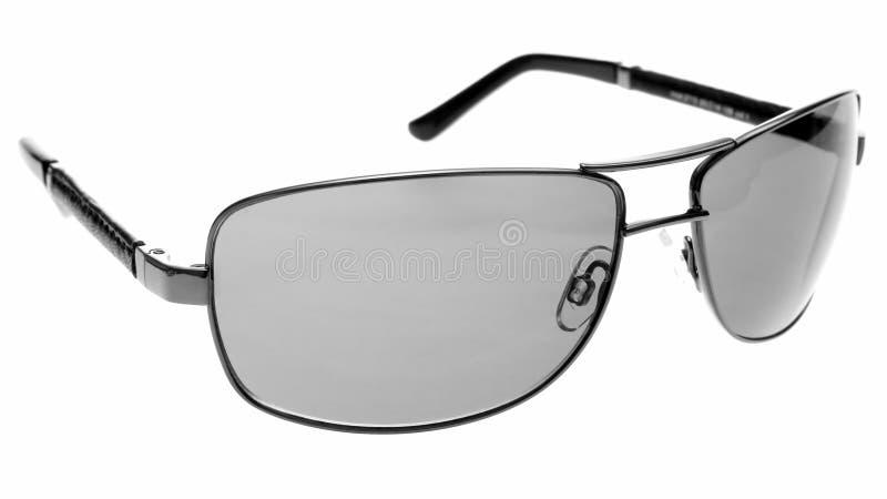 灰色太阳镜 免版税库存图片