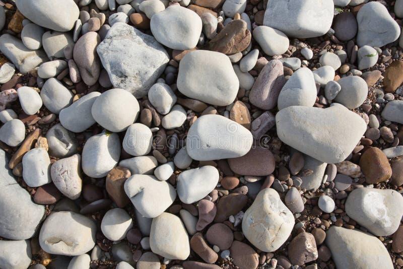 灰色小卵石和石头和木瓦,背景纹理在圣Audries海湾萨默塞特的海滩发现了 图库摄影