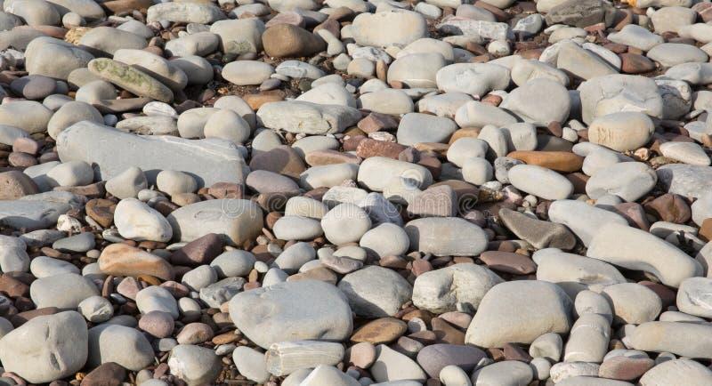 灰色小卵石和石头背景纹理在圣Audries海湾萨默塞特的海滩发现了 免版税库存照片