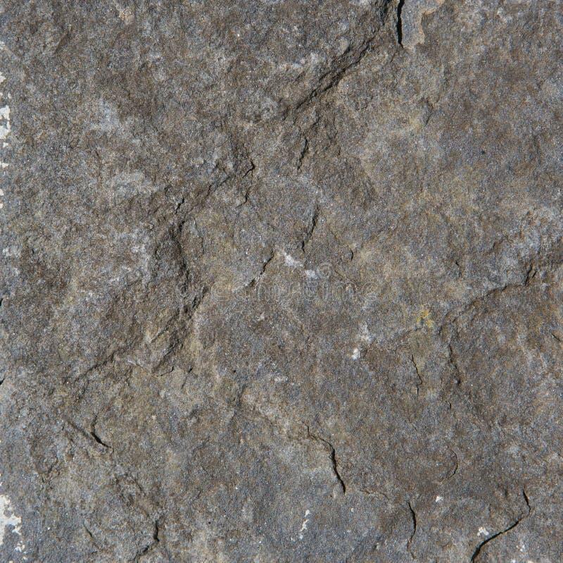 灰色岩石织地不很细背景 库存照片