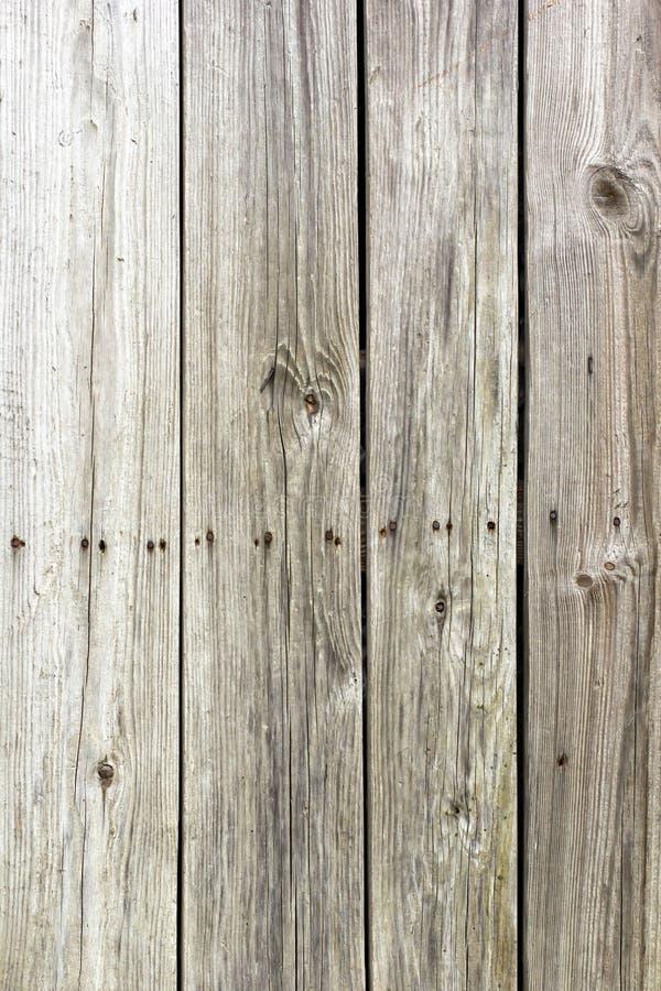 灰色木非对称纹理 库存照片