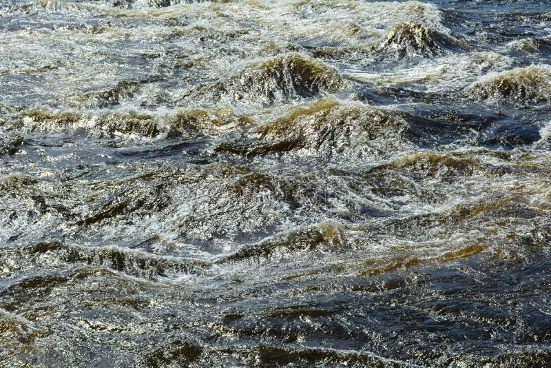 灰色水卷通过急流,Vuoksa河 免版税图库摄影