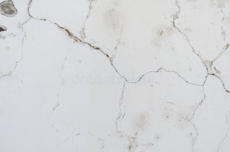 灰色灰泥的背景涂上了并且绘了水泥外部,粗砺的塑象  库存图片