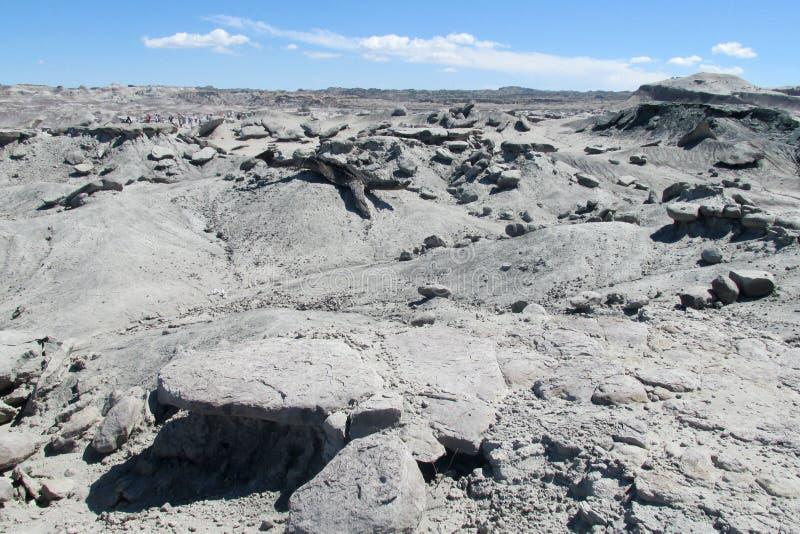 灰色石沙漠 库存图片