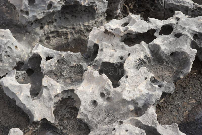 灰色石灰石岩石纹理与小的孔的 库存照片