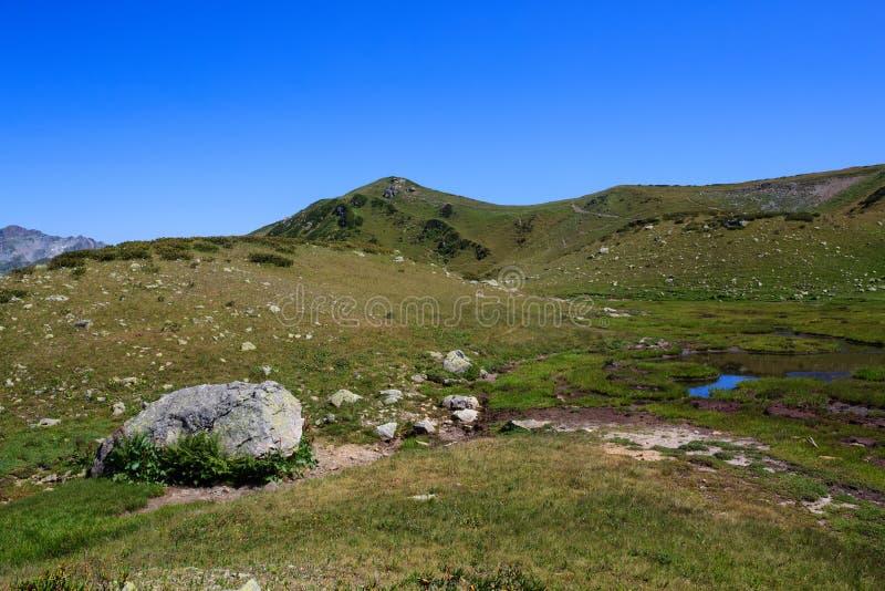 灰色石头和小蓝色湖在绿草阿尔卑斯 库存照片
