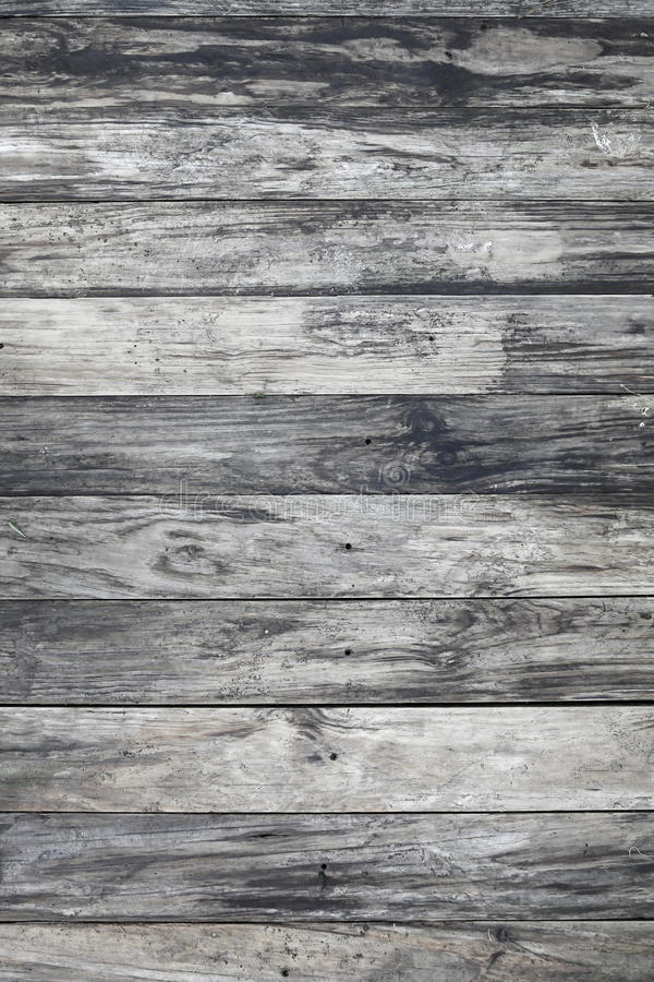 灰色纹理木头 库存照片