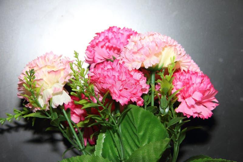 灰色背景中粉红和白色的人造康乃馨花 库存图片