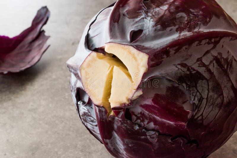 灰色表面上的整个红叶卷心菜 免版税图库摄影