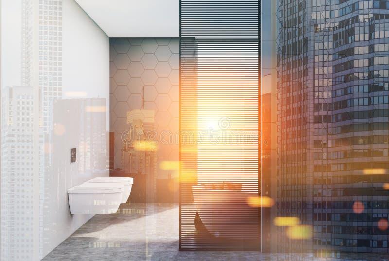 灰色被定调子的瓦片卫生间、木盆和洗手间 库存例证