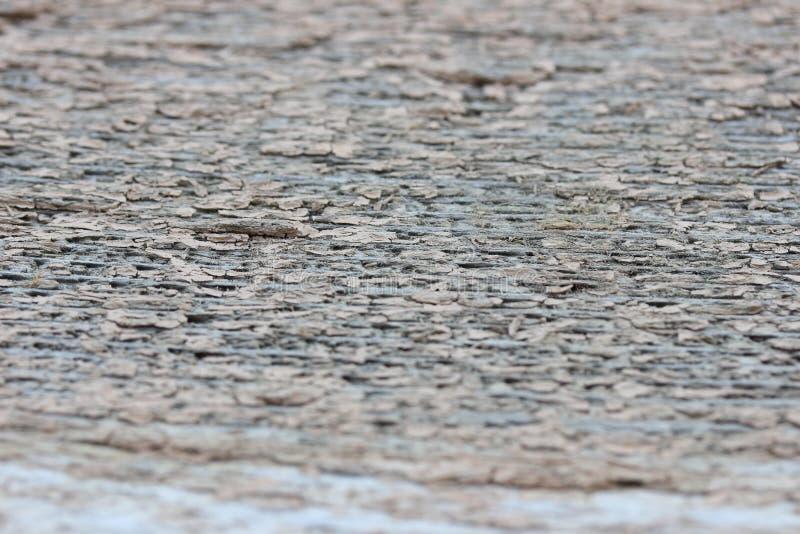 灰色被风化的木五谷背景 库存图片