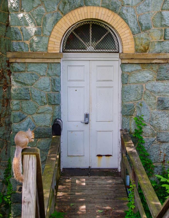 灰鼠在一个美丽的石大厦的入口附近停留 免版税库存图片