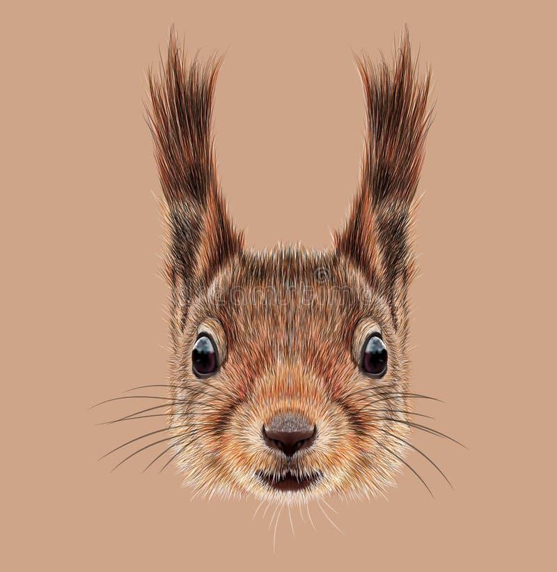 灰鼠被说明的画象  向量例证